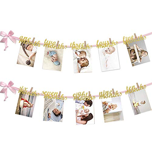 VGOODALL 12 Month Photo Banner, First Birthday Decoration, Milestone Photo Banner for First Birthday Party, Great (Pink and Gold)