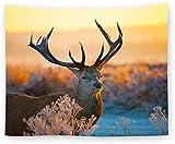 Yuanmeiju Tapiz Wall Hangings Cute Sunset Steppe Deer Animal n Style Fashion Size Print Fabric Tapiz Bohemian Mandala Gothic Couch Throw Blanket For Home Bedroom Living Room Art Decor-150×200cm