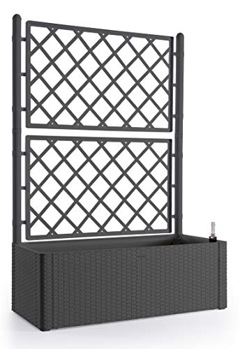 Rankgitter XL in Anthrazit mit Spalier und Blumenkasten 90L - Mit Wasserstandsanzeige - Wetterresistent und UV-Beständig - Ideal für Garten, Balkon und als Sichtschutz