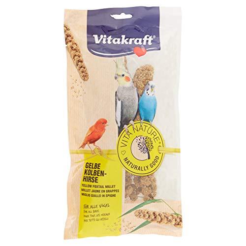Vitakraft - Vita Nature para Pájaros, Espigas de Mijo Amarillo Natural - Bolsa de 100 g