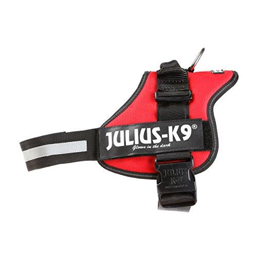 Julius-K9, Talla 2, 71-96 cm, Rojo