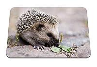 22cmx18cm マウスパッド (ハリネズミの鼻かわいいとげのある) パターンカスタムの マウスパッド
