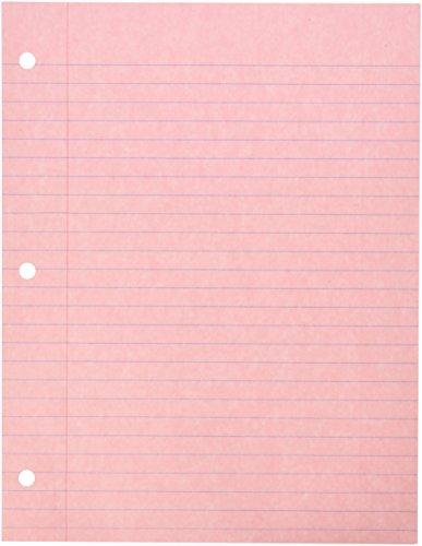 School Smart 3-Hole Punched Filler Paper, 8-1/2 x 11 Inches, Pink, 100 Sheets