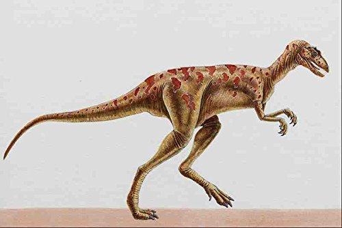 Metal Sign 644030 Herrerasaurus A disfagia por anillo contráctil carnívoro A4 12X8 aluminio