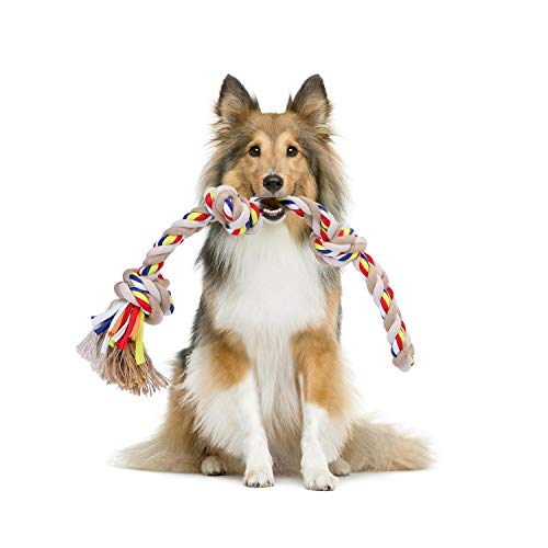 Nobleza - Cuerda de Juguete para Perros 100% algodón, beneficiosa para la Salud Mental del Perro, la Salud Dental y la Limpieza de los Dientes, Tipo de Perros, Beige y marrón