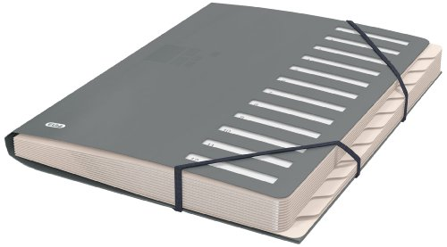 ELBA Ordnungsmappe A4 aus Kunststoff, 12 Fächer/Taben, Pultordner, grau, 1 Stück