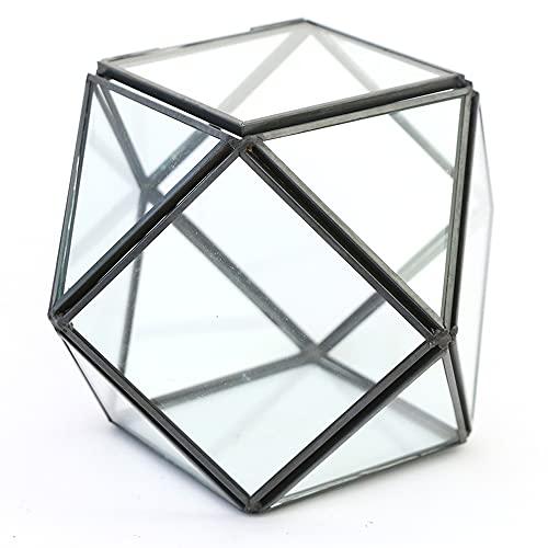 Chytaii - Joyero de cristal, caja de almacenamiento para joyas, transparente, para anillos, pendientes, collares, pulseras, color negro