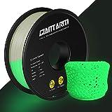 GIANTARM PLA Filamento 1,75 mm verde luminoso, filamento para impresora 3D, PLA luminoso 1kg Spool