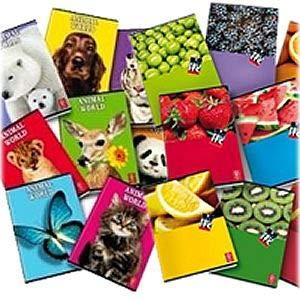 10 maxi quaderno A4 fantasia o monocolore 5 mm con margine 80gr 21 ff quadernone scuola