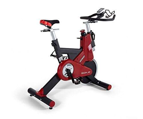 Sole Fitness SB900 Indoor Bike Magnetica