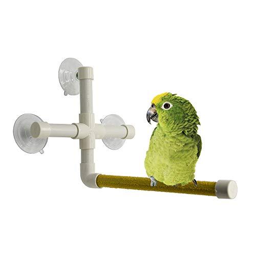 Aisennek Pájaro Pájaro para Perchas de Ducha Portátil Ventosa Pájaro Pájaro Pájaros Perches Pájaros Pájaros Pájaros Pájaros Parrot Macaw Africano Gris Budgie Juguete Juguete Cause Accesorios
