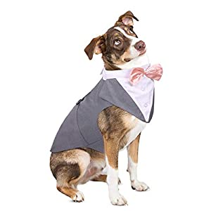 ASENKU Dog Tuxedo, Dog Wedding Shirt Halloween Costume Outfit with Detachable Bandana Bow Tie for Small Middle Large Dogs, Grey, L