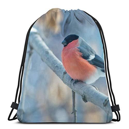 Rasyko Bullfinch Bird In Winter Custom Lace Shoulder Bags Gym Bag Mochila de viaje ligero gimnasio para hombre mujeres 42,8 x 35,5 cm