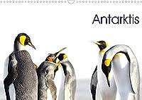Antarktis - viaje.ch (Wandkalender 2022 DIN A3 quer): Landschaft und Tiere im ewigen Eis (Monatskalender, 14 Seiten )