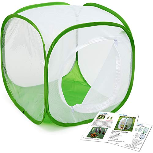 RESTCLOUD Insect and Butterfly Habitat Cage Terrarium Pop-up 12 X 12 X 12 Inches, Polyester Bottom for Easier Clean