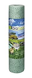 which is the best grass seed in the world