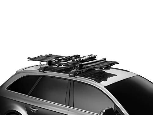 Thule Snowpack Roof Mounted Carrier
