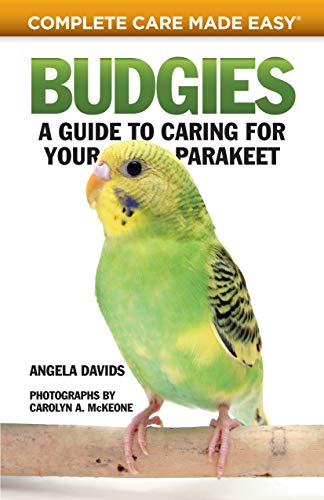 Budgies: A Guide to Caring for Your Parakeet (CompanionHouse...