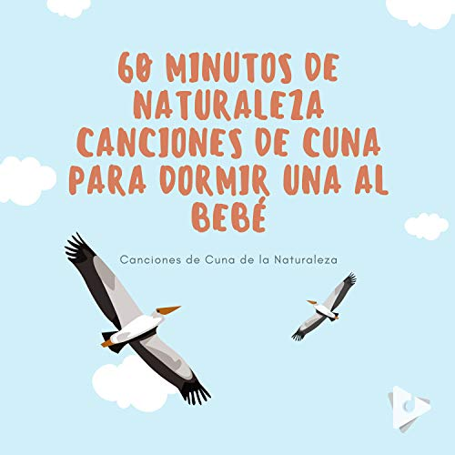 60 Minutos de Naturaleza Canciones de Cuna Para Dormir una al Bebé