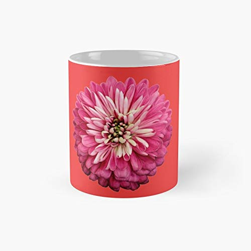 Open Soul Flowers Rose Apothecary Classic Mug - A Novelty Ceramic Cups Inspirational Holiday Gifts For Morther's Day, Men & Women, Him Or Her, Mom, Dad, Sister, Brother, Coworkers, Bestie.