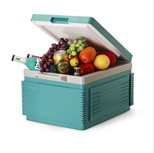 GJHBFUK Refrigerador del Coche 12L, Compresor portátil del refrigerador, Sistema de Punto Caliente de CA y CC, Termostato, Almacenamiento de Drogas, Refrigerador cosmético. (Color : Green)
