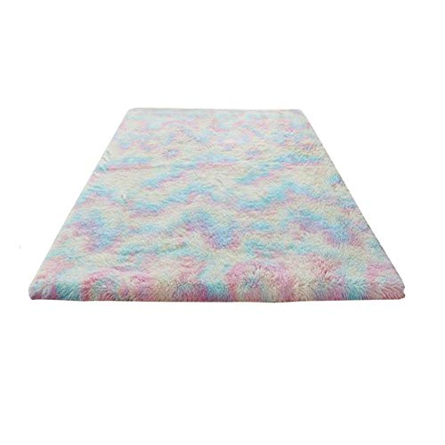 Tree2018 Kids Rainbow Area Rug, Soft Colorful Fluffy Rug for Girls Bedroom Decor, Cute Rainbow Area Rugs for Nursery Room, Plush Carpet for Baby Girl Toddler Play Room,3 Sizes