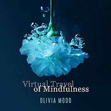 Virtual Travel of Mindfulness