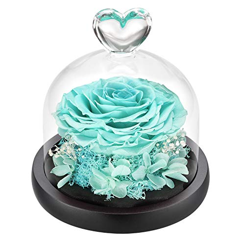 DuHouse Forever Roses Preserved Real Flowers Eternal Enchanted Rose Flower Box Gift for Valentines Birthday Anniversary Mother's Day Christmas(Tiffany Blue)