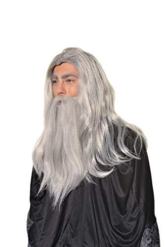 Halloween Cosplay Wizard, Sorcerer, Warlock Wig & Beard Set H0554 Grey