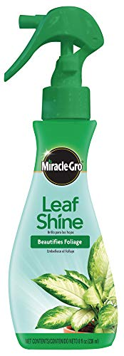 Miracle-Gro 100720 Leaf Shine