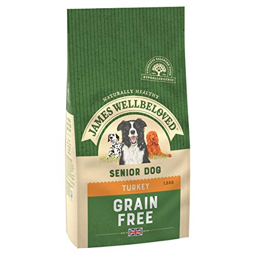 James Wellbeloved Complete Dry Grain Free Senior Hundefutter Truthahn und Gemüse, 10 kg