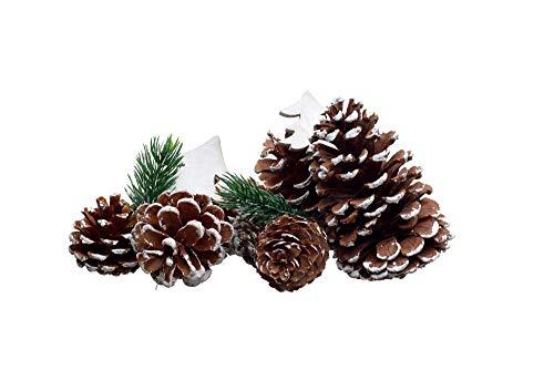 Heitmann Deco Tannenzapfen - 26tlg. - Deko-Set - leicht beschneit - Schnee - Adventszeit - Weihnachten - Natur, weiß - ca. 5-10 cm