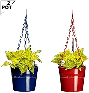 Metal Hanging Planters-Blue & Red (2 HIGH POTS)
