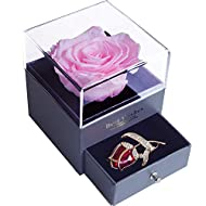 SWEETIME Forever Pink Rose Jewelry Gift Box, Enchanted Real Rose with Ruby Rose Brooch, Eternal Handmade Preserved Rose Flower for Women,Wife, Girlfriend on Valentine's Day, Birthday, Mother's Day.