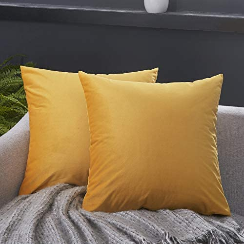 Best JUSPURBET Decorative Lumbar Pillow Covers,Pack of 2 Velvet Throw Pillow Covers for Couch Bed Sofa,So