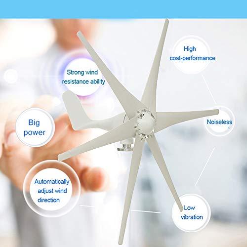 LWQ 5000W Windgenerator, 12V / 24V / 48V 6 Blade-Windkraftanlagen Horizontale Startseite Powers Windmühle Energieanlagen Lade,Weiß,12V