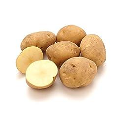 北海道産 ご家庭用 じゃがいも 男爵薯 10kg (共撰/サイズお任せ) 店舗名:北のデリシャスが山形から出荷致します!