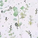 Lillestoff Bio Baumwollstoff Eucalipto Blätter Eukalyptus
