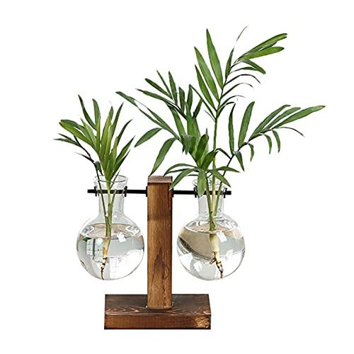 WANGYA Sac de Plantation Plante hydroponique Vases Vintage Flower Pot Transparent Vase en Bois Cadre en Verre Plantes Plantes Home Bonsaï Décor Sac de Plantation Respirant (Color : Type B)