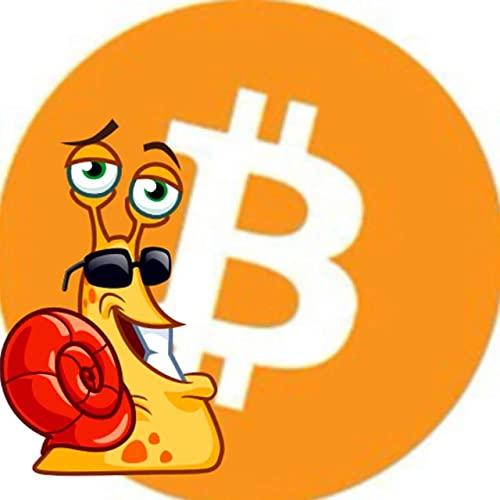perso il mio portafoglio bitcoin