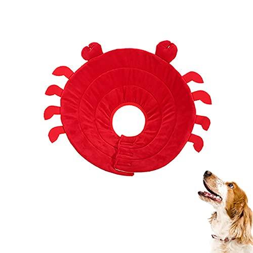 Befitery Collarín para perros con forma de E y protección antifugas, anillo para el cuidado de mascotas, collar de Elisabetánico, para mascotas, gatos, perros, cachorros y gatitos (M)