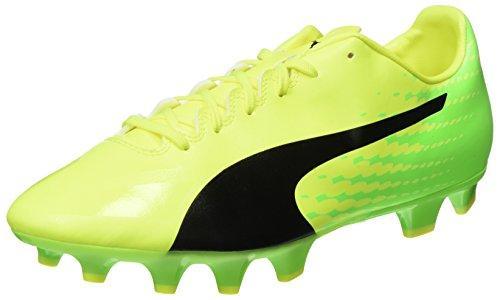 Puma Herren Evospeed 17.4 FG Fußballschuhe, Gelb (Safety Yellow Black-Green Gecko 01), 44 EU