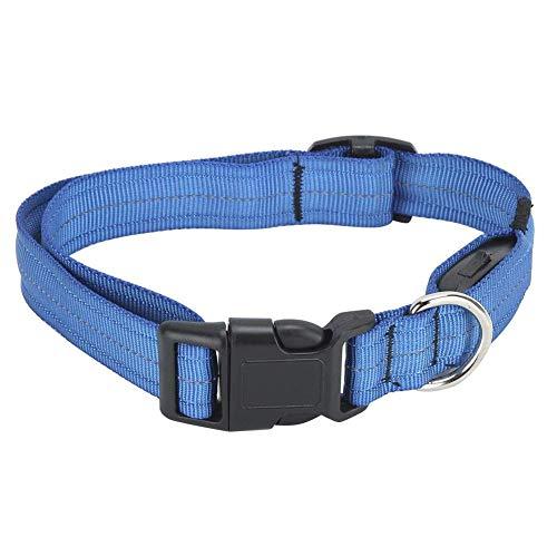 SALUTUYA Collar Brillante para Mascotas, Ajustable, con Hebilla de tracción con Anillo en D, Collares Brillantes nocturnos(Blue, S)