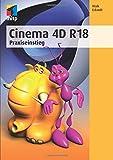Cinema 4D R18: Praxiseinstieg