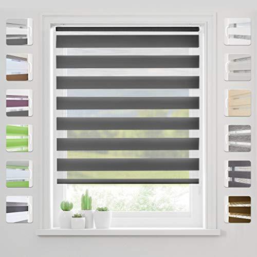 bobodeco Doppelrollo Klemmfix Ohne Bohren (Anthrazit,65x130cm) Duo Rollo Transparentes und undurchsichtiges mit klemmträger Sonnenschutzrollo Fensterrollo für Fenster & Türen