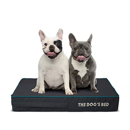 The Dog's Bed Orthopedic Bed Review