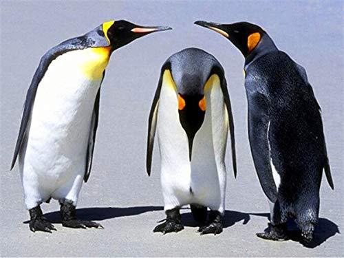 neivy Pinguin Tier Schnee 5D Diamant Malerei Full Kit DIY für Erwachsene Strass Stickerei Bilder Kreuzstich Kunsthandwerk für Zuhause Wanddekoration (Quadrat 30x40cm)