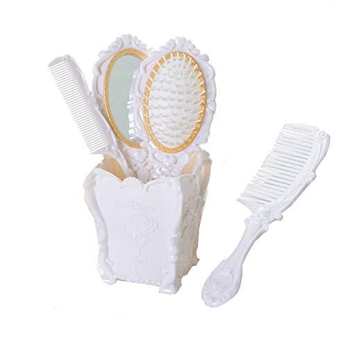 Haudang Juego de 4 peines-peines-peines-peines-guía para mujer, para el cuidado del cabello, masajeador, con espejo, para rizos húmedos y secos, herramienta de peinado Weii