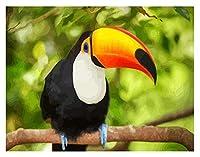 番号キットによるDIY油絵ペイントオウムの鳥のパターン番号キットによるDIY油絵描画キャンバス家の装飾ギフト