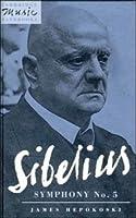 Sibelius: Symphony No. 5 (Cambridge Music Handbooks)